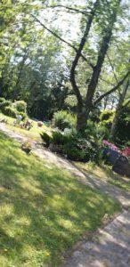 Bestattungen in Steglitz-Zehlendorf