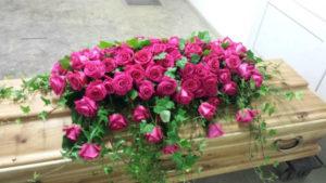 Sargdecke pinkrote Rosen
