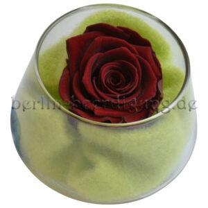 Gesteck mit haltbarer echter Rose in Dunkelrot